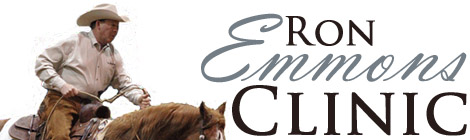 Ron Emmons reined cow horse clinic