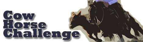 Cow Horse Challenge feature image